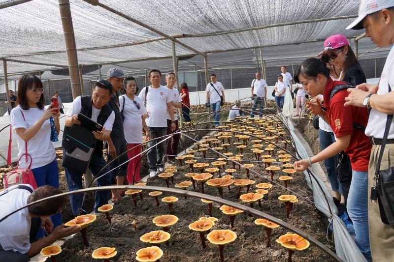 Fujian Xianzhilou Biological Science and Technology Company